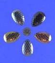 Indiana Honeycomb Spinner